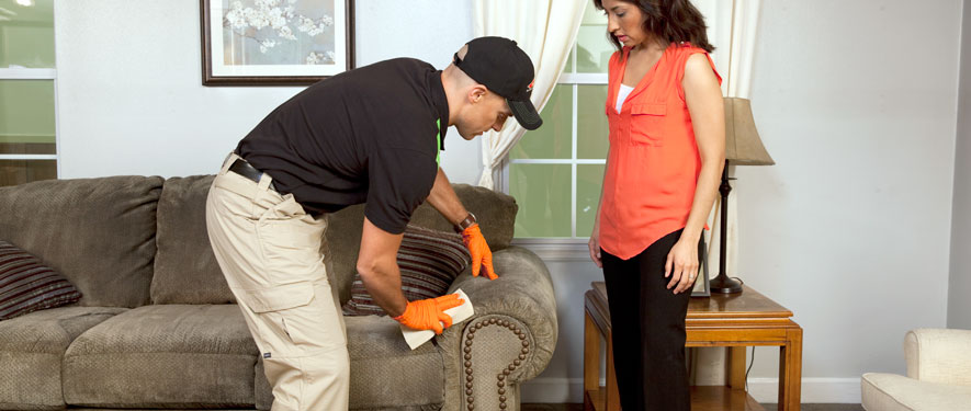 Rockville, MD carpet upholstery cleaning